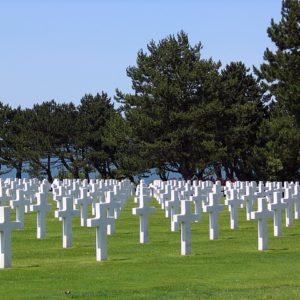 樹木葬と納骨堂の比較