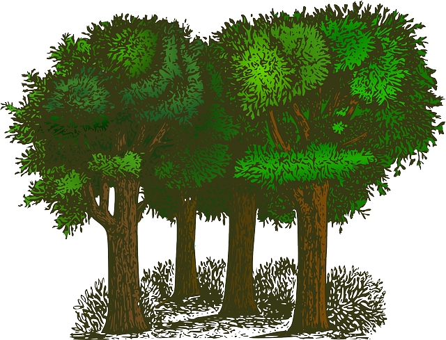 樹木葬のデメリット