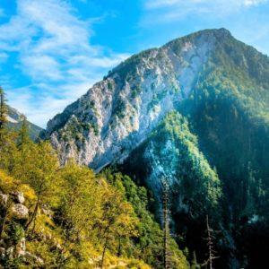 山に散骨をするイメージ