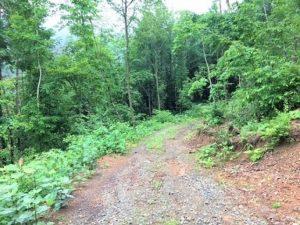 早池峰山の山道,樹木葬