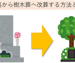 樹木葬,改葬