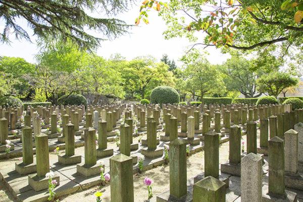 墓じまいをする墓地