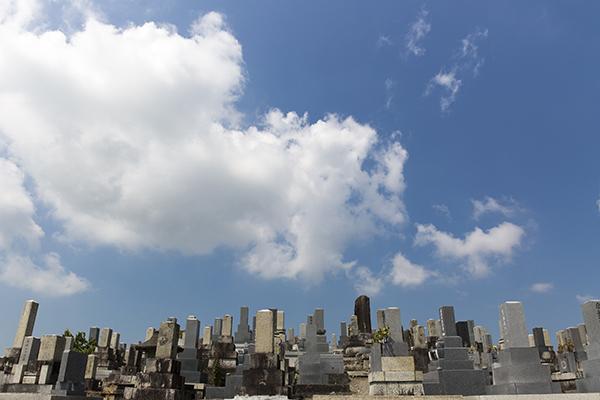 共同墓地と青空